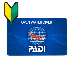 PADI-オープンウォーター・ダイバー・コース