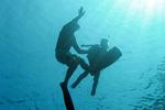 ダイブマスター・コース-泳力