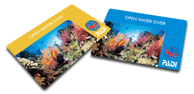 「padi オープンウォーター」の画像検索結果