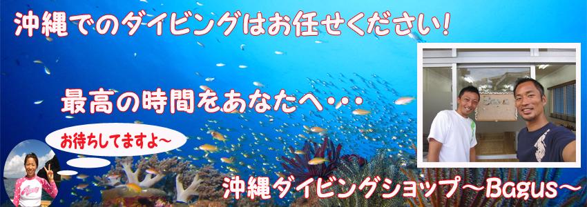 沖縄ダイビングはバグースへ