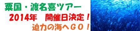 粟国・渡名喜2014トップ