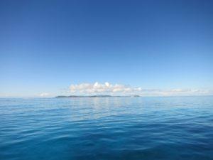 珊瑚のモニタリング&駆除活動