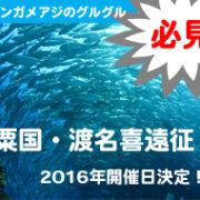 2016年 粟国遠征開催日決定!
