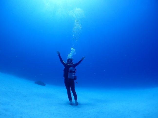 イメージショット! 慶良間|ダイビング