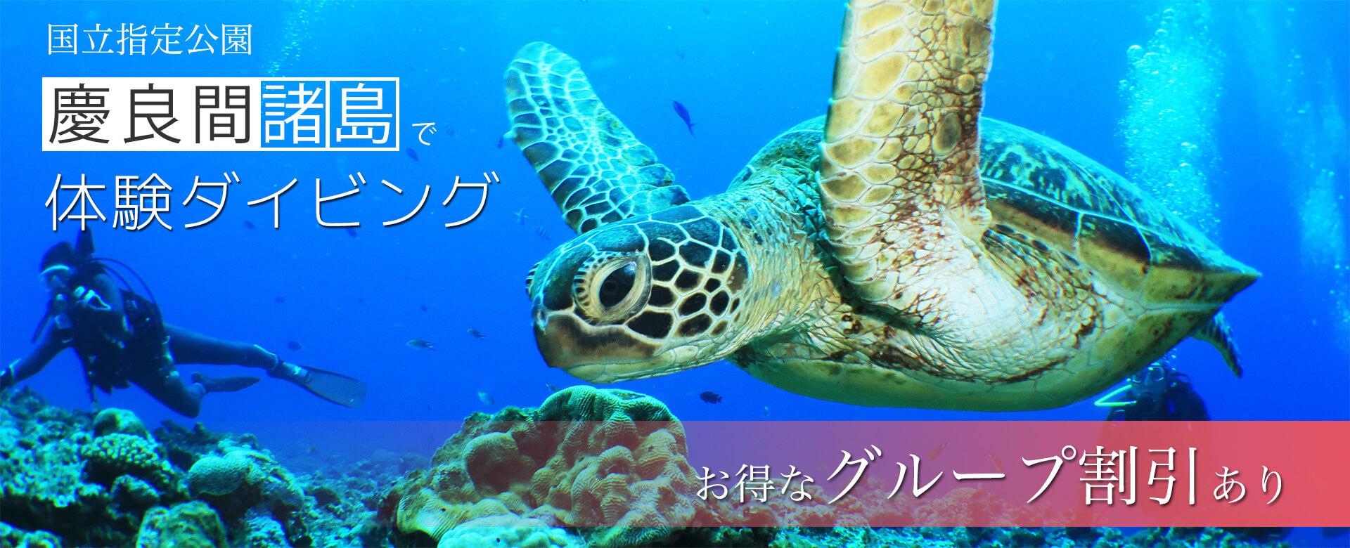 国立指定公園・慶良間諸島で体験ダイビング お得なグループ割引あり