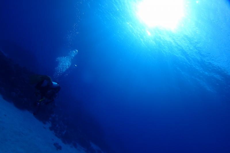 水中とダイバー