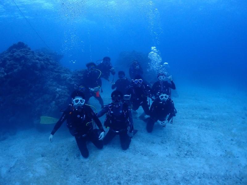 水中で集合写真