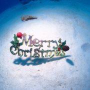 冬到来!?クリスマスイブ! 沖縄|慶良間