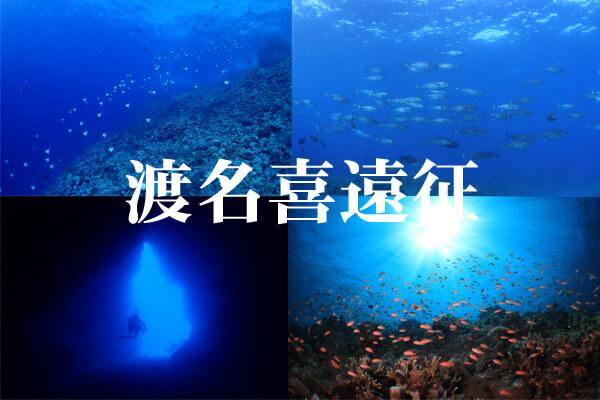 渡名喜ダイビング