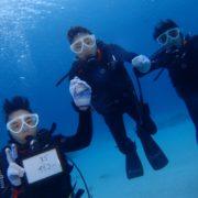 慶良間で体験ダイビング!  沖縄|慶良間