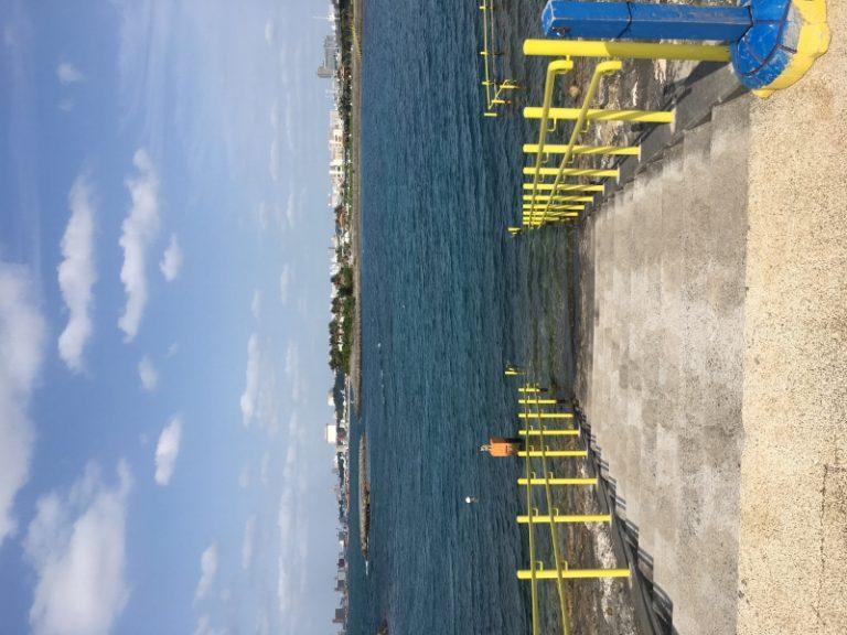 NSPでマンツー講習  沖縄|ライセンス講習