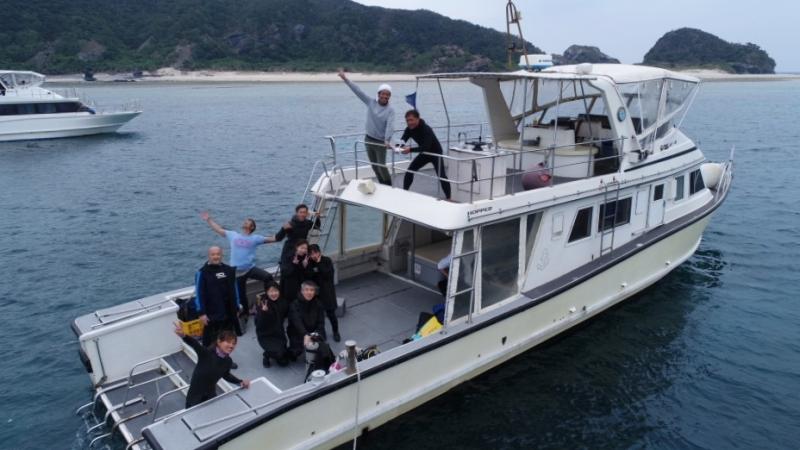 カメ   沖縄|慶良間