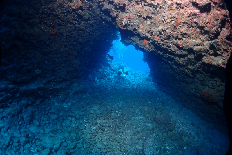 沖縄の水中風景