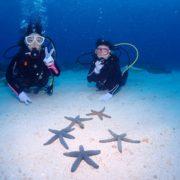 講習&体験  沖縄|ダイビング