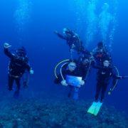 賑やかなGW  沖縄|ダイビング