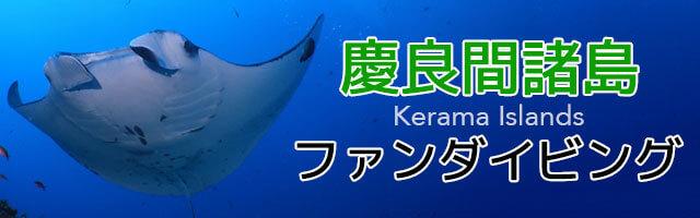 慶良間諸島ファンダイビング