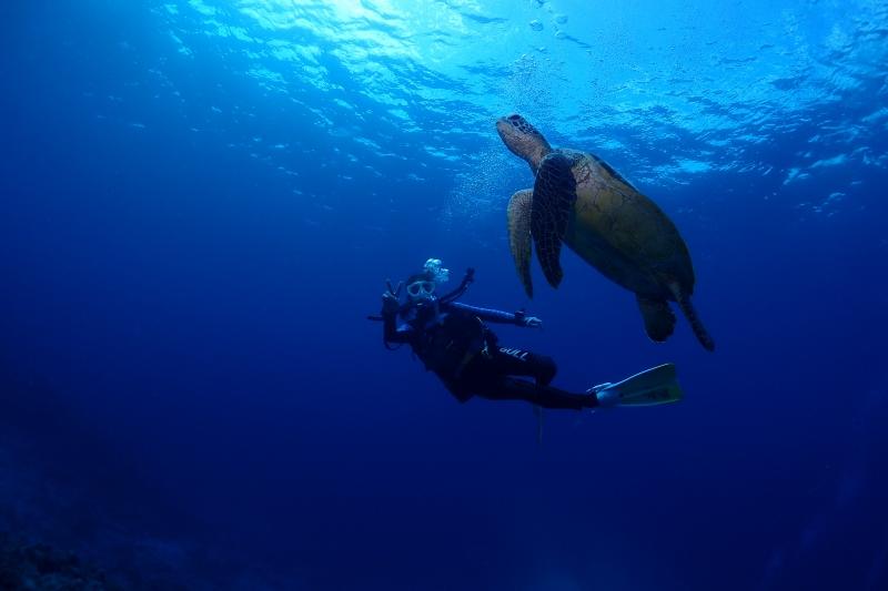 沖縄でダイビングライセンスはバグースで☆